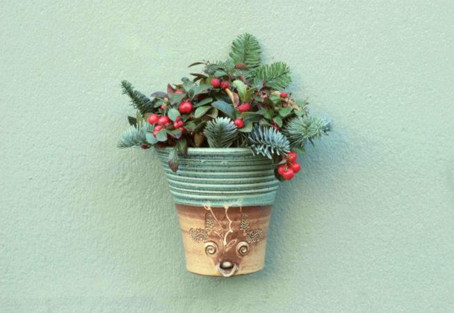 Ein grüner Wandhängetopf an einer grünen Wand, winterlich bepflanzt